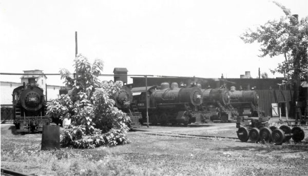 2-8-0s 1215 and 1256, 0-6-0 3672, 2-8-0 1251 and 0-6-0 3675 at the Joplin, Missouri Roundhouse on July 24, 1949 (Arthur B. Johnson)